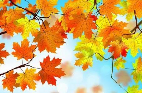 «Осенний бал»