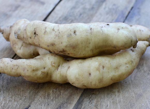 Bio Fehér húsú batáta/ kg