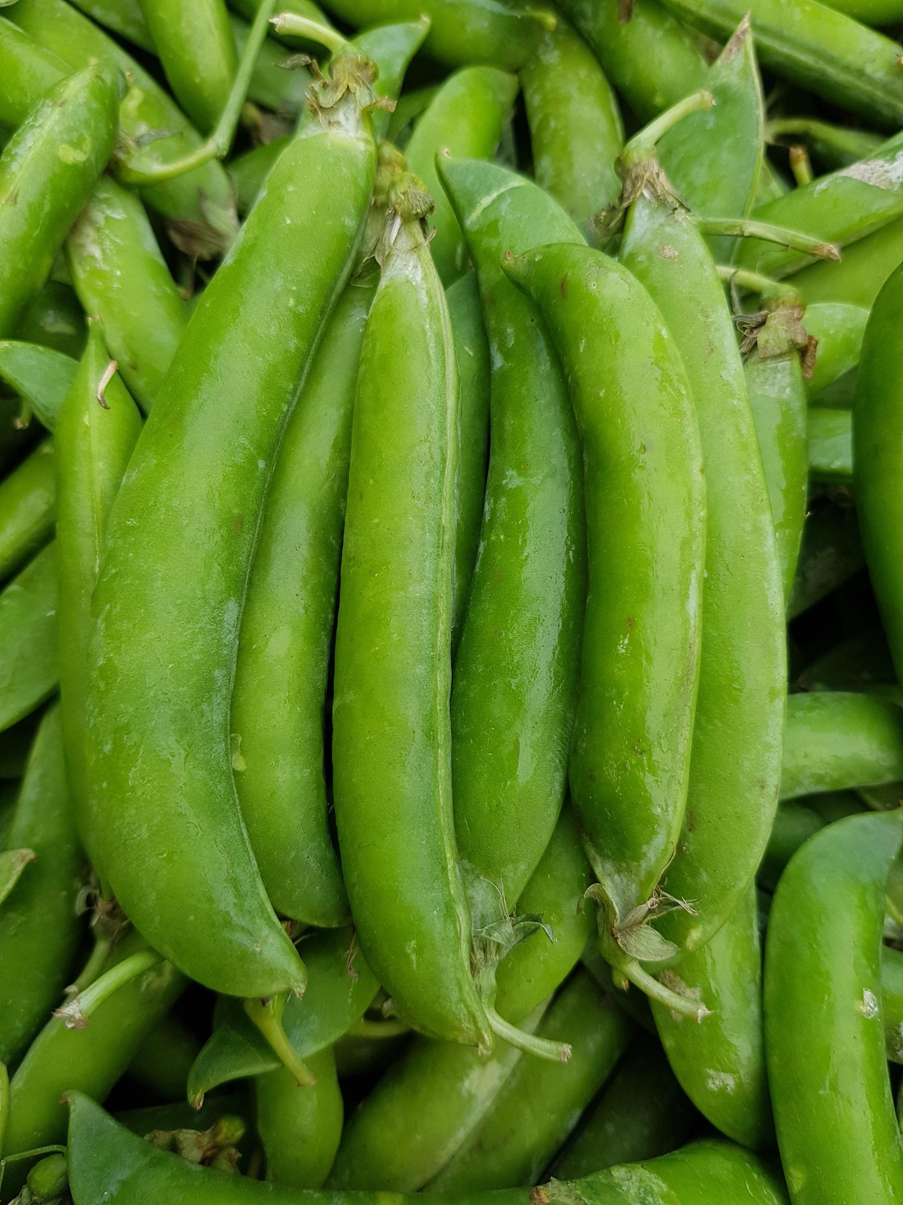 bio zöldség -borsó
