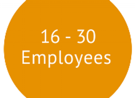 Large Business Membership 16 - 30 Employee