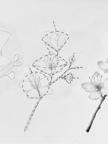 Flower 8.5x11.jpg
