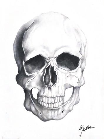 skullsketch.jpg