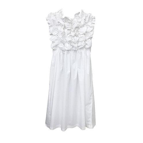 Shukra Dress White