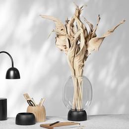 Morchella vase for ChiCura