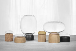 Boletus containers and vases for ChiCura