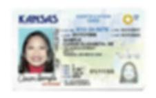 Restricted License Image.jpg