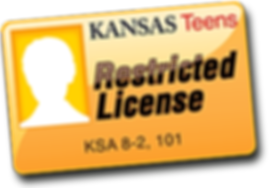 license-icons_restricted-license-NEW.png