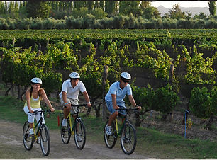 vinoyaventura-bike.jpg