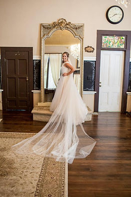 Cathedral-length wedding veil