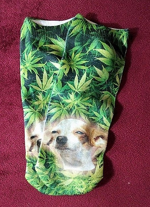 CannaPup Socks