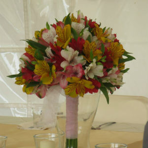 Alstromeria Bride's Bouquet