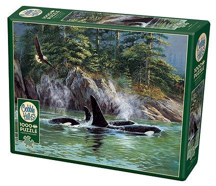 Orcas 1000pc Cobble Hill Jigsaw Puzzle