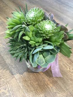 Bride's Maid Bouquet 1 - Succulents