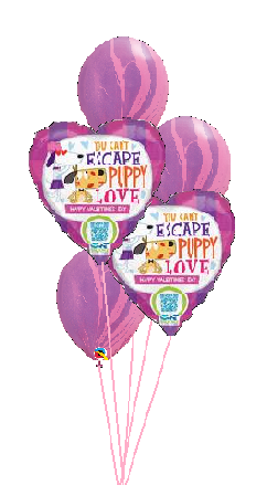 Classic Balloon Bouquet - Puppy Love