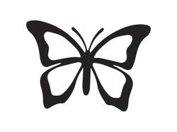 butterfly-960