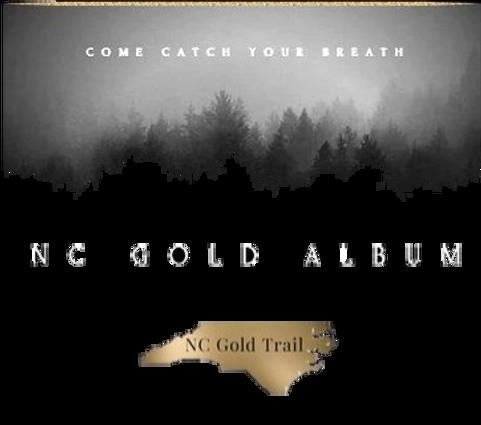 Gold Album Logo New Transparent_edited.p