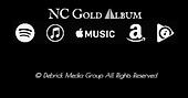 Gold Album Retail Logos.png