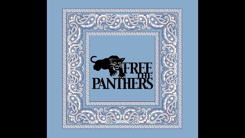 Free The Panthers Handkerchief