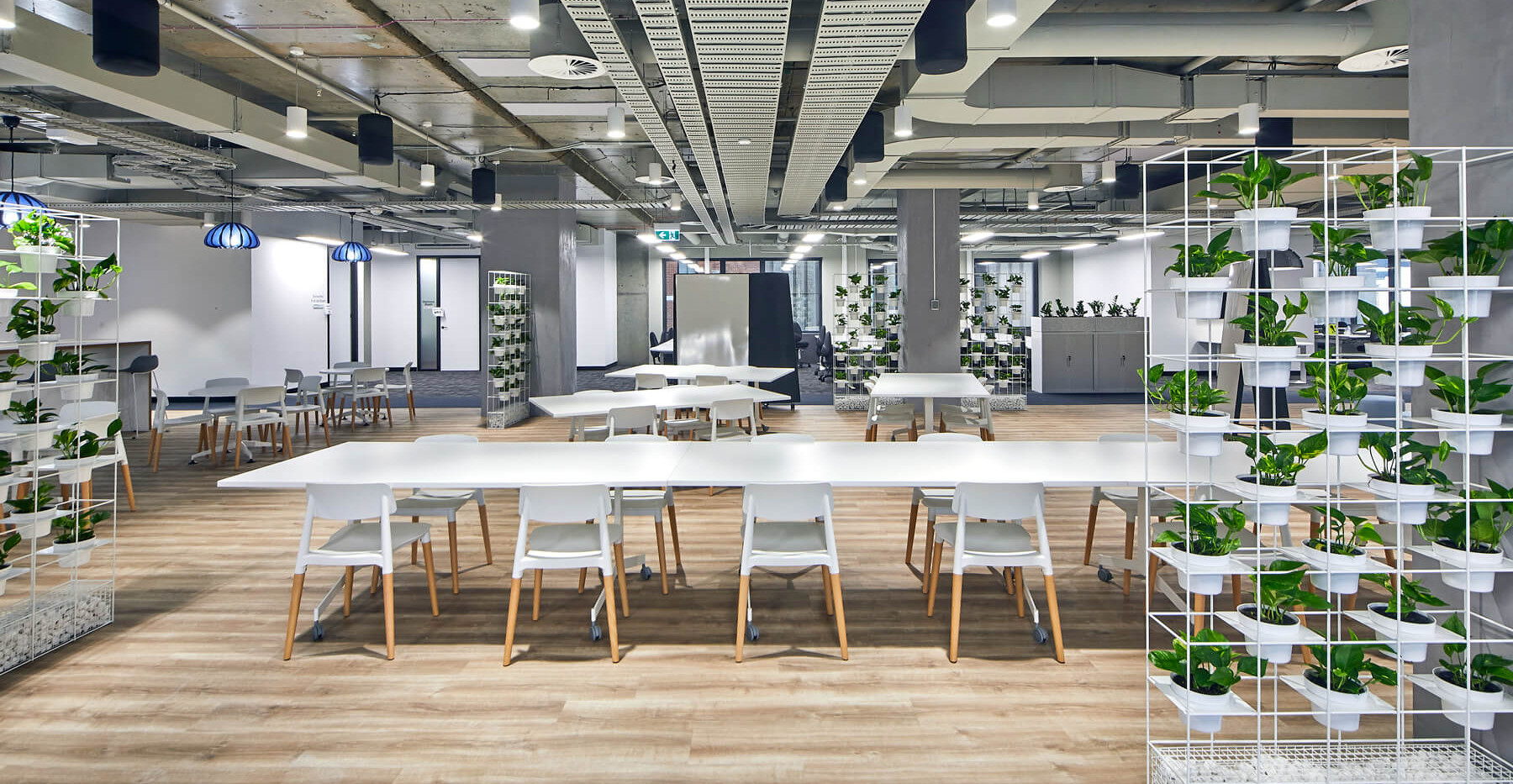 Renacent Healthdirect - Renacent Healthdirect - Interior Architecture