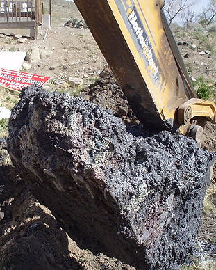 contaminated soil.png