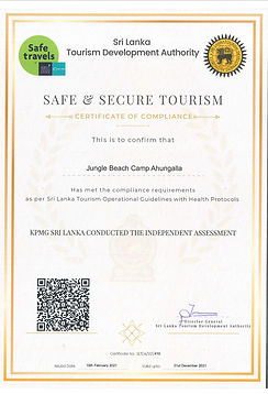 Safe&Secure Certificate.jpg