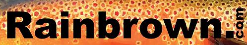 Rainbrown. Sticker Orange Bottom