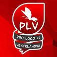 Proloco Vestenanova.jpg
