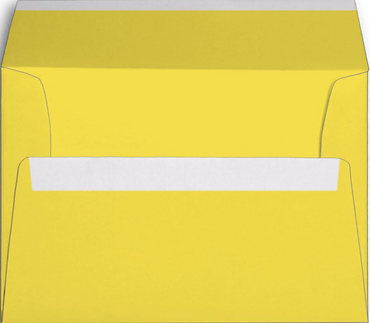 YELLOW COLOR-Inside.PNG