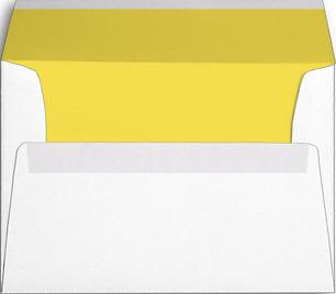 Env, White, Yellow Inside.PNG
