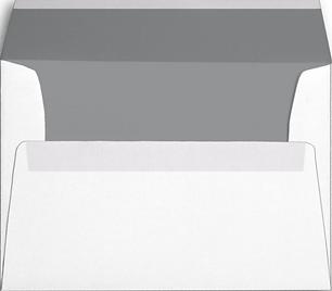 Env, White, Gray Inside.PNG
