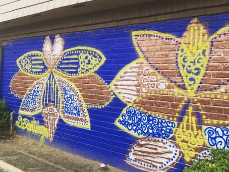 Gulfton art project highlights diversity of the neighborhood
