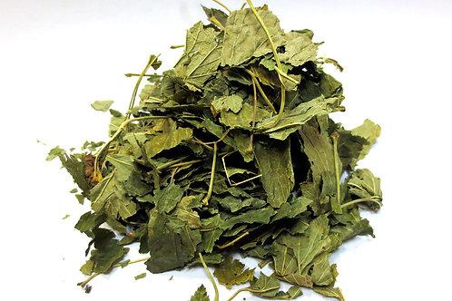 Смородина, лист (70 гр.)