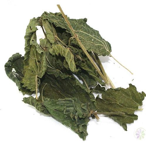 Крапива, лист (70 гр.)