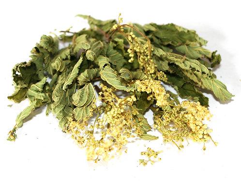 Лабазник, трава (70 гр.)