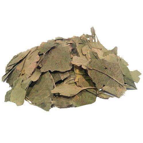 Гингко билоба, лист (70 гр.)