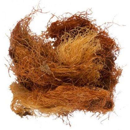 Кукурузные рыльца (50 гр)