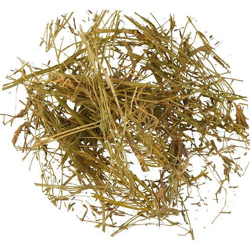 Золототысячник, трава (70 гр.)