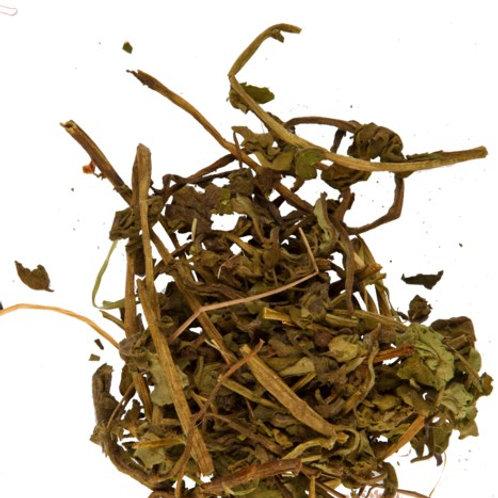 Медуница, трава (70 гр.)
