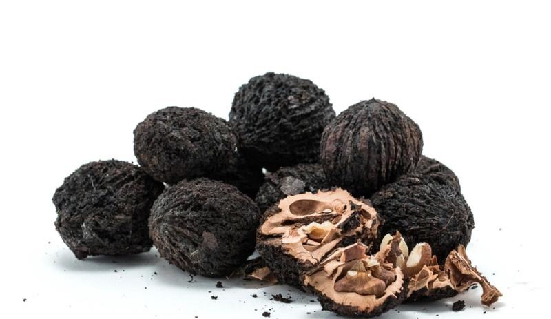 Орех чёрный, плод
