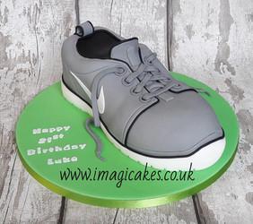 Trainer - Running Shoe.jpg