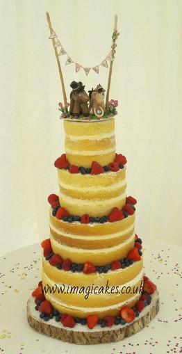 Fruit sponge wedding.jpg