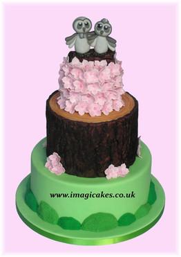 Woodland Owls Imagicakes Wedding Cakes H