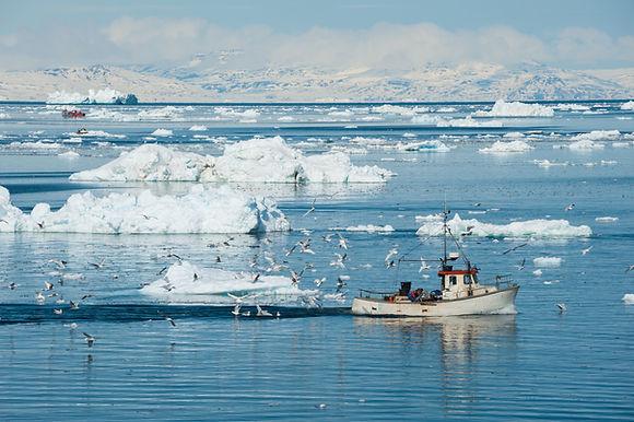 Fisherman boat, Ilulissat, Greenland.jpg