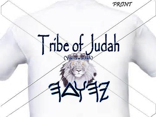Tribe of Judah - paleo