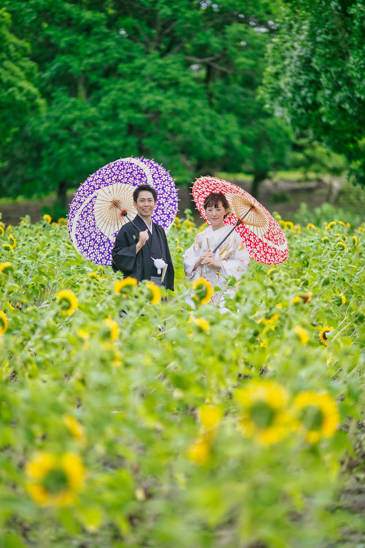 和傘ひまわり畑前撮り