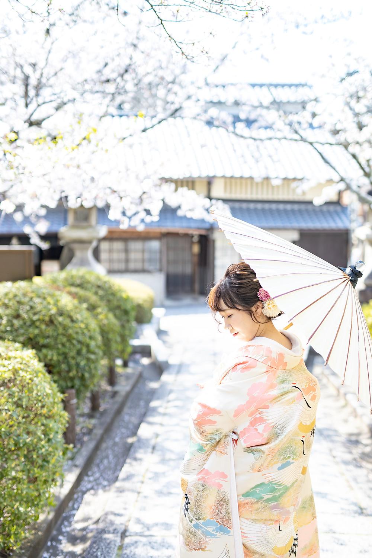 色打ち掛け 桜