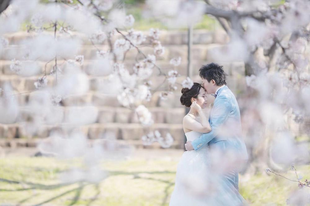 桜に包まれた前撮り