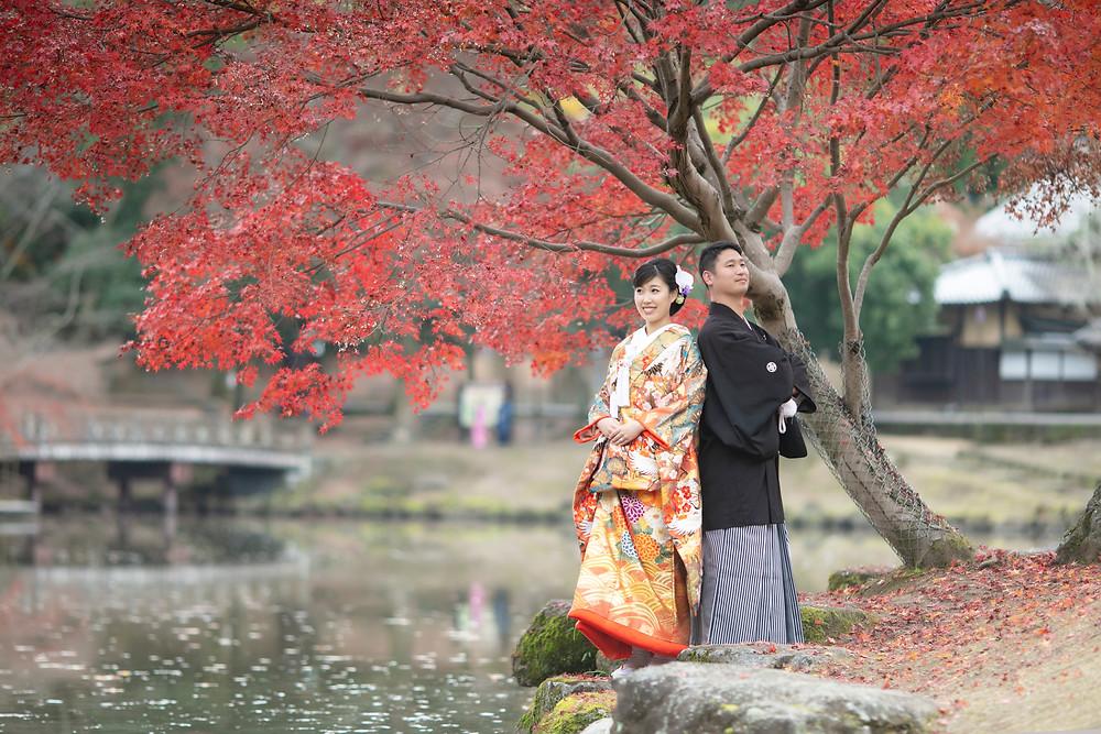 奈良公園紅葉前撮り