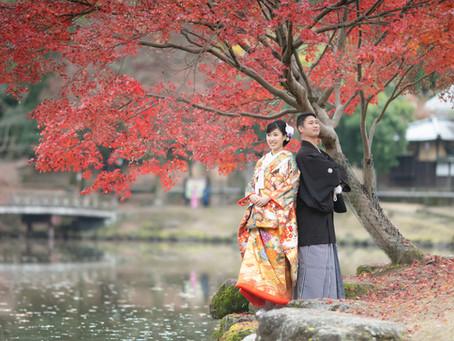 奈良公園前撮り撮影