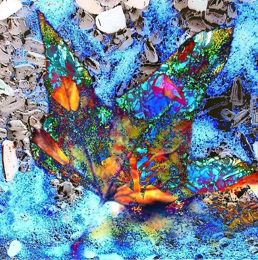 tracy ellyn artist miami genesis series leaf series jerusalem israel